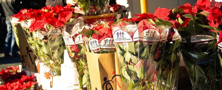 """L'Ail in piazza a Reggio con una """"Stella per la vita"""""""
