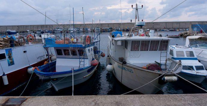 Bagnara, Neri: «Dalla Regione arrivano i finanziamenti per il porto turistico»