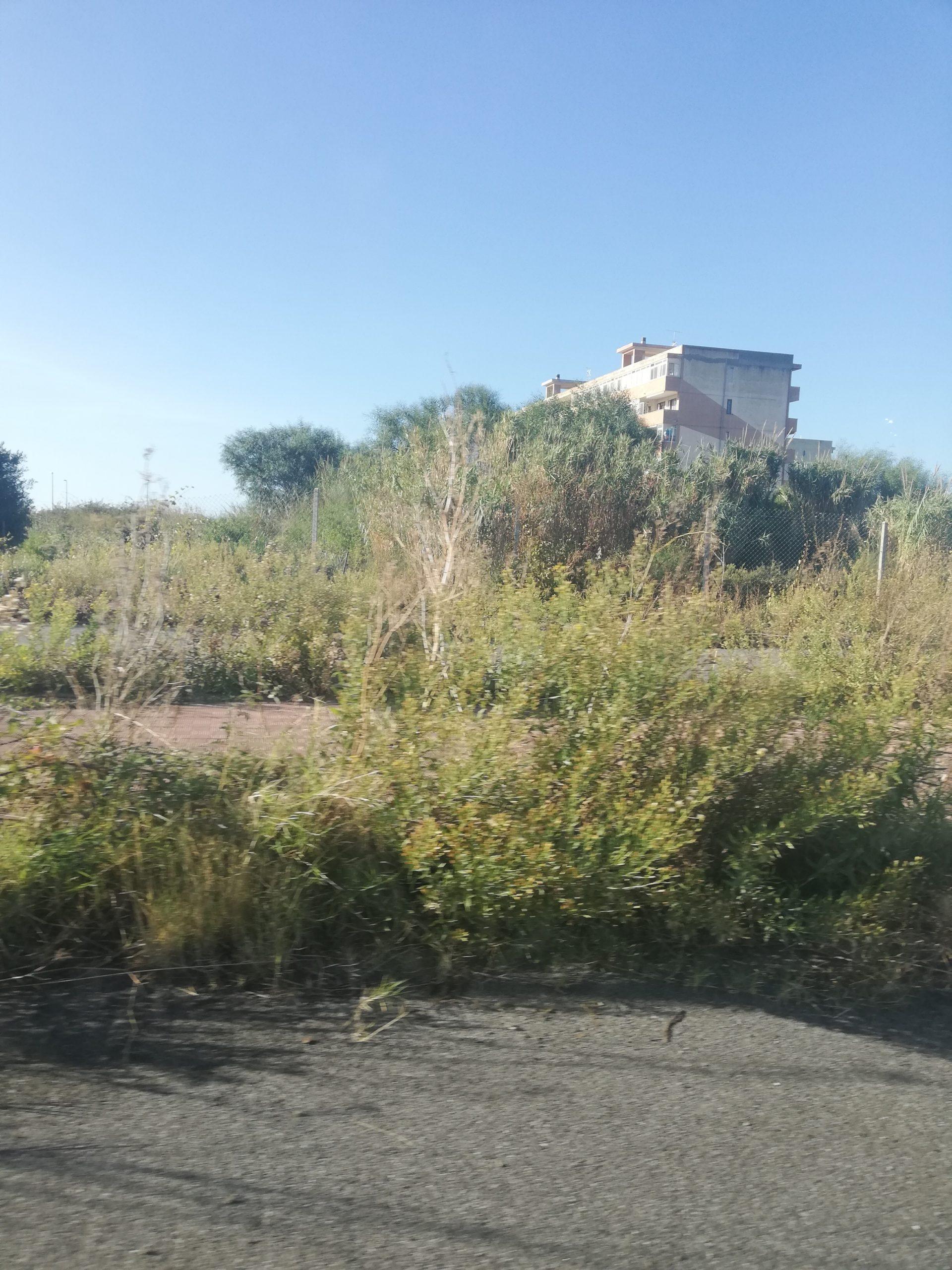 Degrado, rifiuti e abbandono al cimitero di Salice Arghillà
