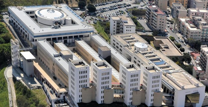 Università Mediterranea, accordo fra il Dipartimento di Agraria e l'associazione provinciale cuochi reggini
