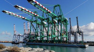 Porto di Gioia Tauro, la Filt Cgil si scaglia contro Nogarin