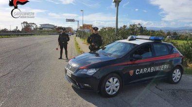 Locride, un arresto e sette denunce da parte dei carabinieri