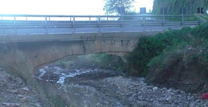 Bagnara, l'ex cantiere autostradale uccide le aziende agricole da 15 anni