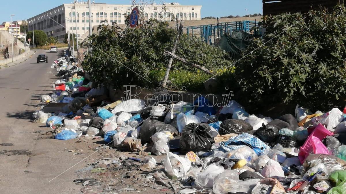 I Verdi sui rifiuti: «L'Asp verifichi se è in atto un'emergenza sanitaria»