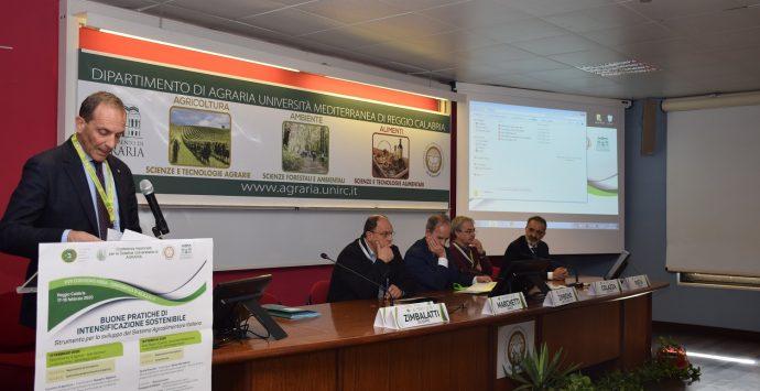 """Quale futuro per l'agricoltura? Proficuo incontro alla """"Mediterranea"""""""