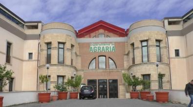 Università Mediterranea, domani si apre il ciclo di seminari della Biblioteca di Agraria