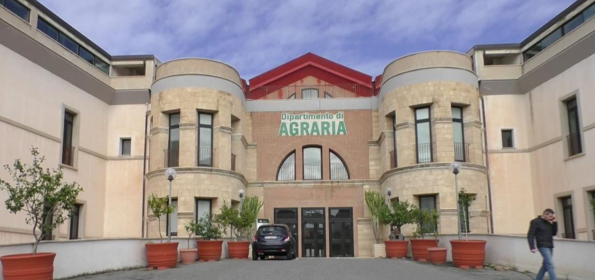 """Università di Agraria, """"L'agricoltura urbana in Europa"""": seminario online"""