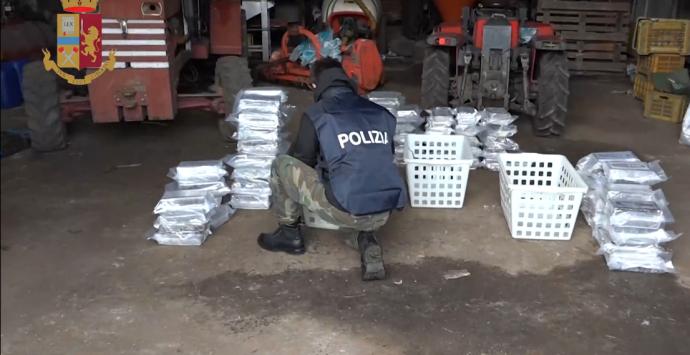 'Ndrangheta, deteneva in casa oltre mezza tonnellata di cocaina: arrestato Rocco Molè