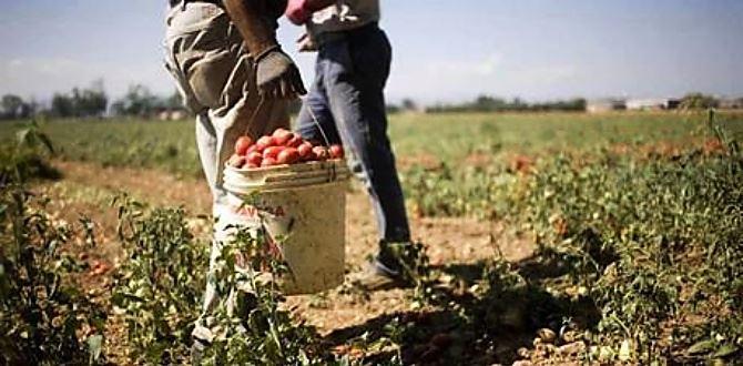 Coronavirus, in arrivo il terzo decreto economico: aiuti anche per i lavoratori in nero
