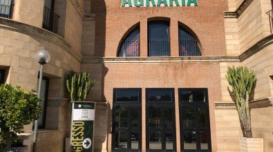 Università di Agraria: sostenibilità e innovazione, le nuove sfide dello sviluppo rurale