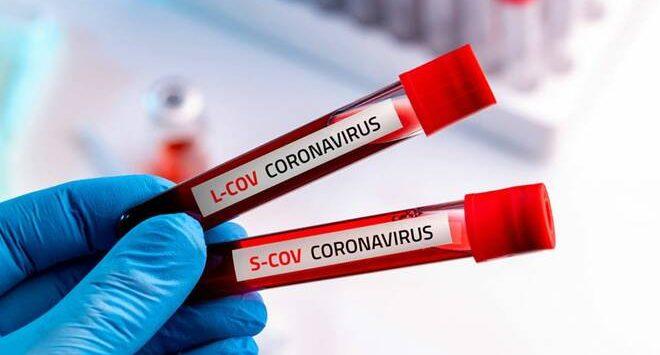 Coronavirus in Calabria, 28 nuovi casi positivi e +1 a Reggio. Il bollettino della Regione