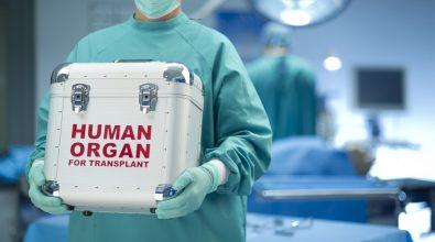 Giovane donatore reggino salva tre vite: trapiantati reni e fegato