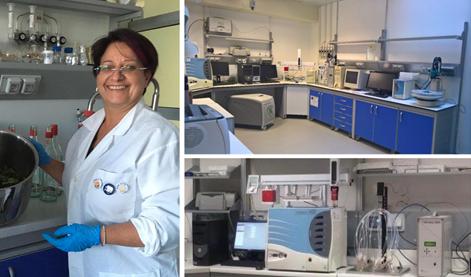 UniRc Agraria, gli studi del Focuss Lab del sul Ginepro Feniceo ed il Gin di Calabria