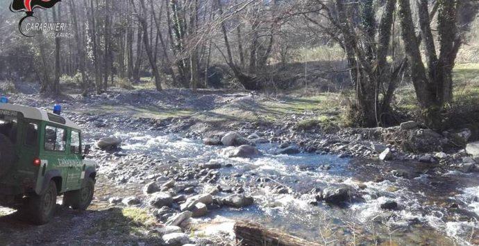 Sessantenne disperso nel parco dell'Aspromonte ritrovato dai carabinieri della forestale