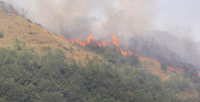 Riparte la stagione degli incendi. Calabria Verde in azione a Bova