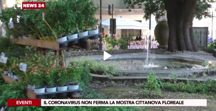 """""""Cittanova floreale"""": il coronavirus non ferma la dodicesima edizione della mostra"""