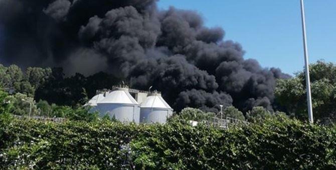 Vasto incendio nel depuratore di Gioia Tauro, vigili del fuoco sul posto