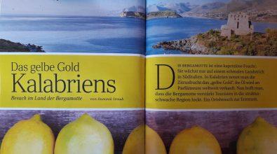 Reggio Calabria, Pazzano: «Grazie a noi la rivista Reader's Digest parla di bergamotto»
