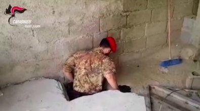 Costruiscono un bunker per coltivare marijuana. In manette padre e figlio a Taurianova