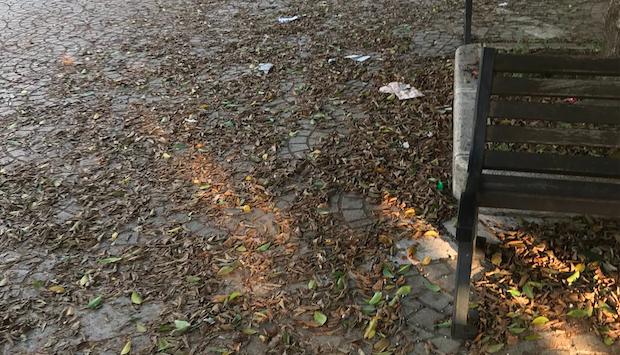 Rosarno, il Gruppo comunale della Lega: «È una città sporca e abbandonata»
