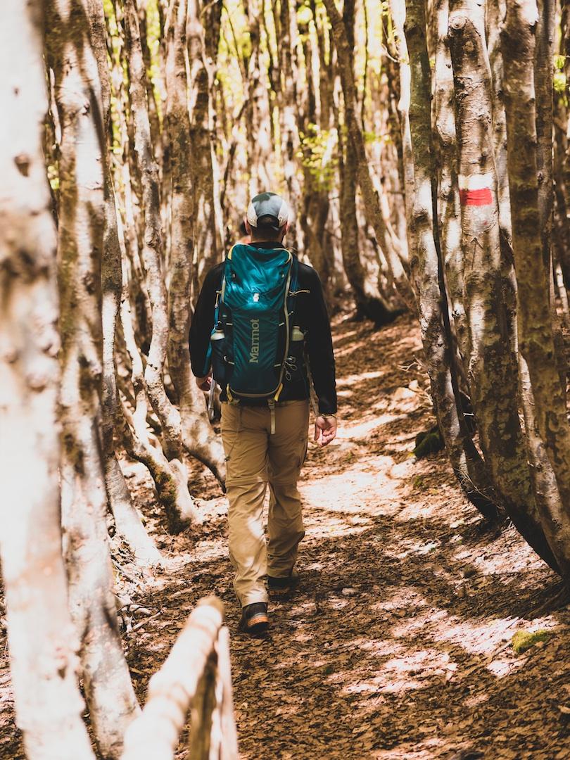 """""""Adotta un sentiero"""", il Parco affida alle associazioni manutenzione e promozione di oltre 230 km di rete sentieristica"""