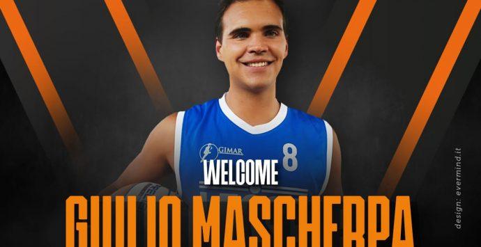 Viola, è ufficiale l'arrivo in squadra di Giulio Mascherpa