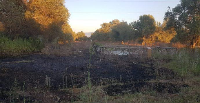 Rosarno, incendio nel parco archeologico di Medma. La Lega insorge: «Chi risponderà di omissioni e mancata custodia?»