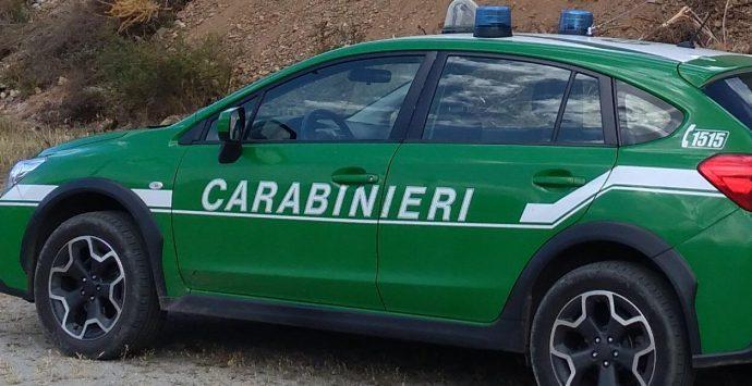 Reggio Calabria, incendiano un capannone industriale dismesso. Arrestati mandante ed esecutore