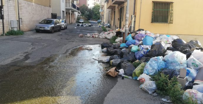 Reggio, degrado e spazzatura nella via che conduce alla Mediterranea