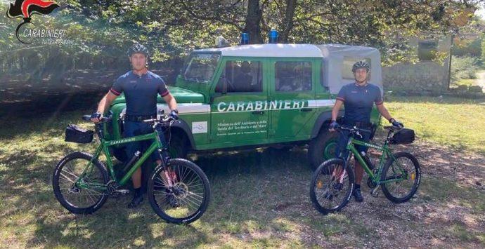 Parco d'Aspromonte, i militari in bicicletta a tutela del patrimonio naturalistico