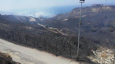 Lazzaro, Crea: «La combustione dei fanghi di depurazione a è un pericolo per la salute pubblica»