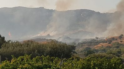 Incendio a Motta San Giovanni, l'amministrazione chiede verifiche e lo stato di calamità