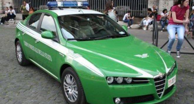 Reggio Calabria, operazione antibracconaggio dei carabinieri forestali: un arresto e due denunce