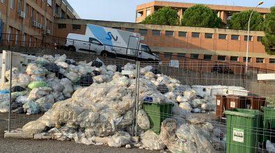 Locri, l'ospedale sommerso dai rifiuti. Botta e risposta Fortugno-Calabrese