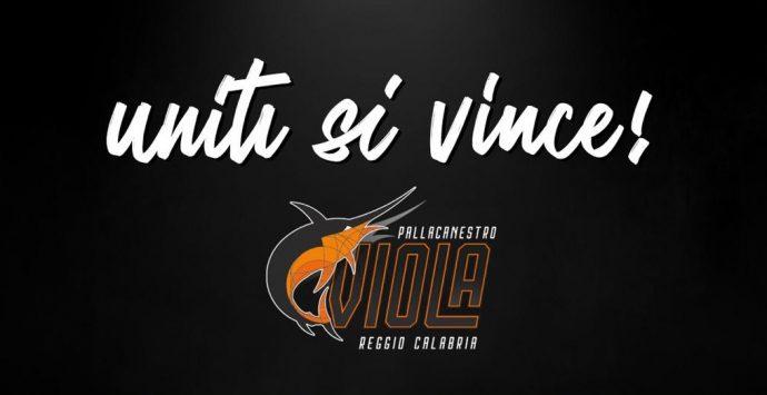 Basket, Viola e Avis rinnovano la partnership