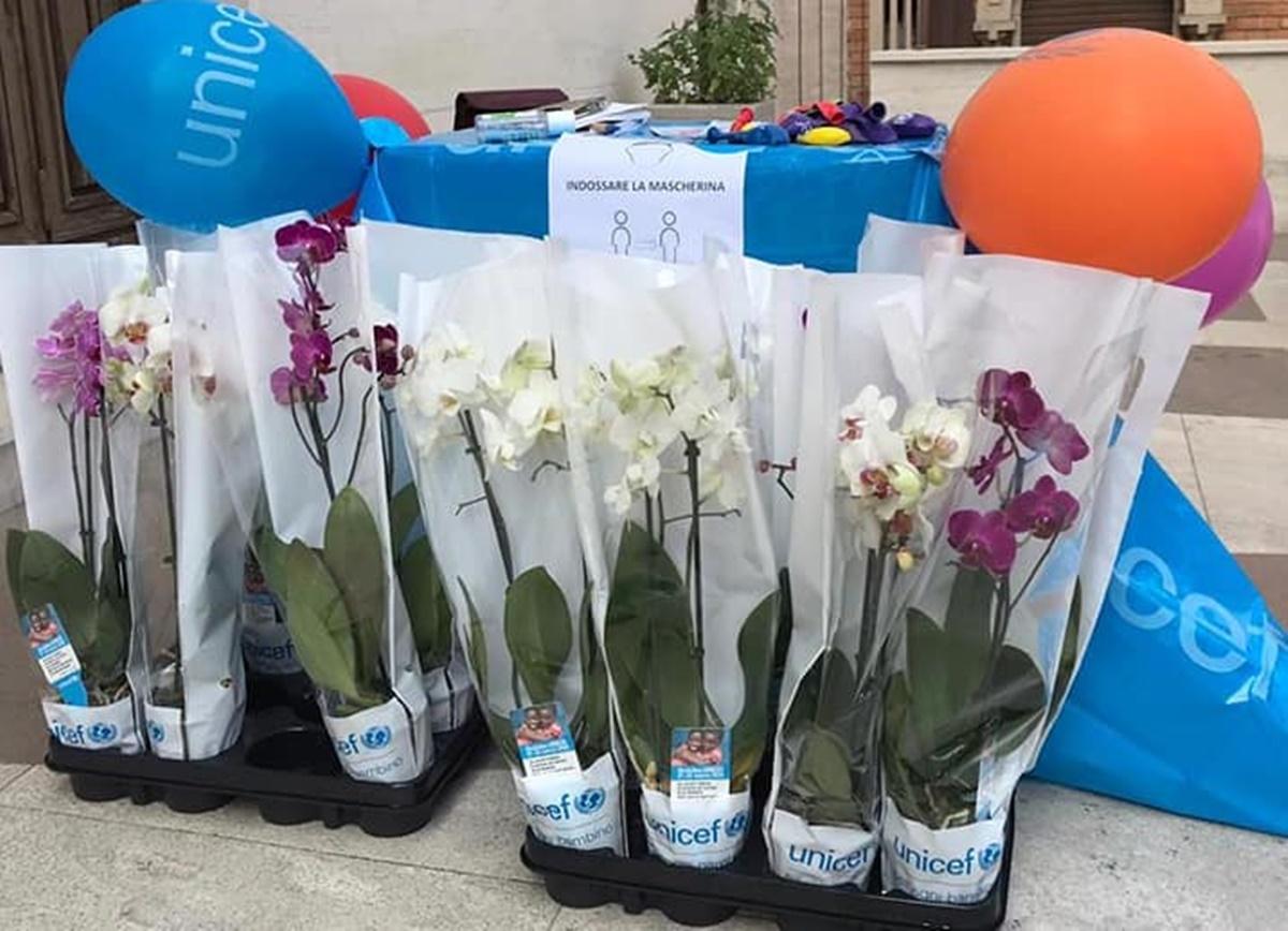 Reggio Calabria, orchidee dell'Unicef: grande risposta all'iniziativa per contrastare la malnutrizione infantile