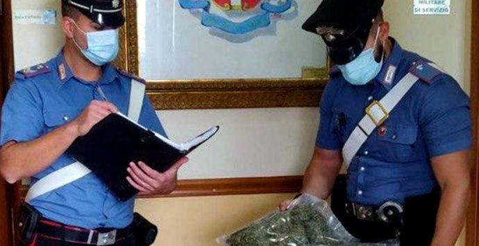 Rosarno, scoperti coltivazione e laboratorio per la droga in casa. In manette due giovani
