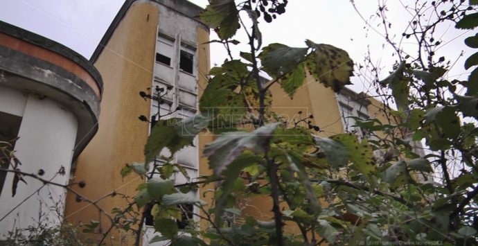Un cavallo morto nell'ospedale fantasma: ecco l'immagine della sanità calabrese