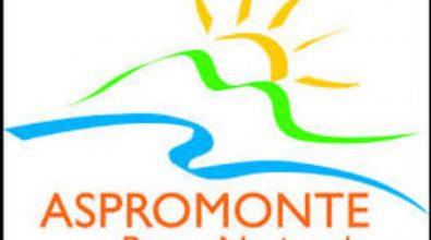 Parco d'Aspromonte, stabilizzati gli lsu-lpu. Il plauso del consiglio direttivo