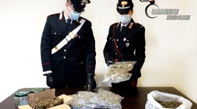 Taurianova, nascondeva la droga dietro le tende da campeggio. Arrestato 43enne