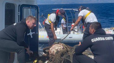 Guardia Costiera, il bilancio della direzione marittima reggina