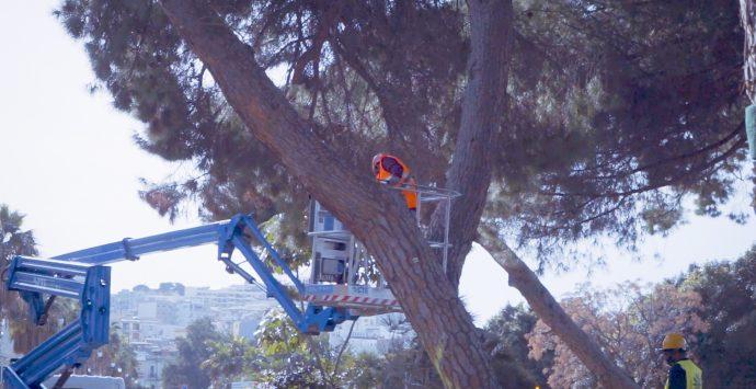 Pineta Zerbi, proseguono i lavori al cantiere del waterfront