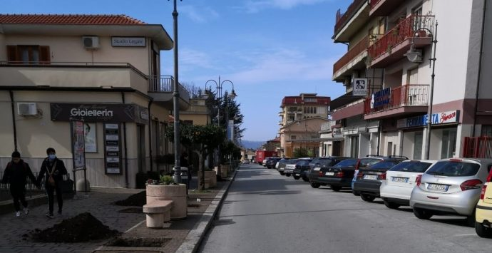 """La Pro Loco """"Taurianova nel cuore"""" dona alberi alla città"""