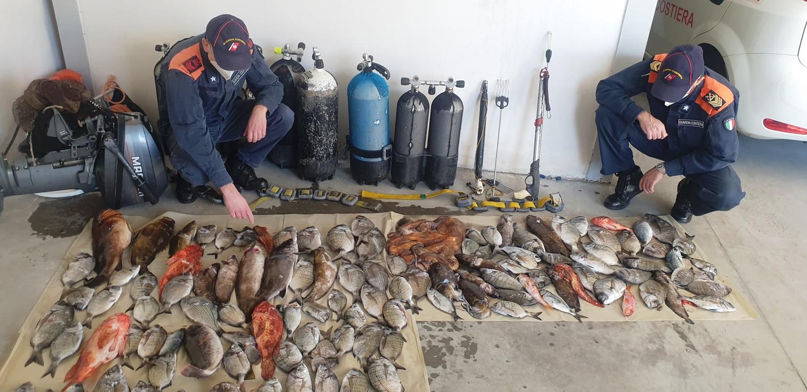 Bagnara, la Guardia costiera sorprende tre pescatori di frodo