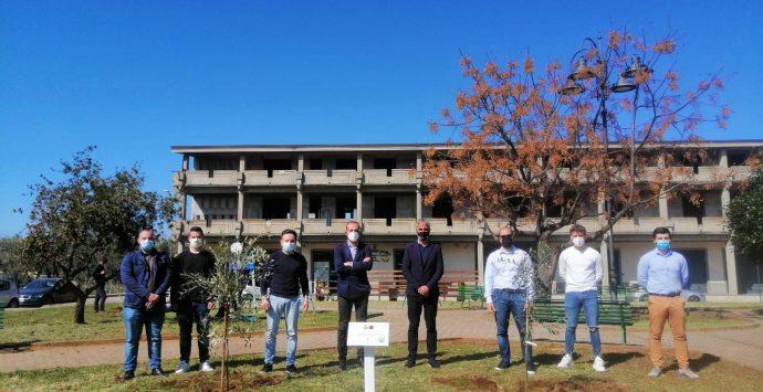 Quinto giardino della memoria per le vittime di Covid realizzato a Rizziconi