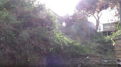 La storica scalinata di via Giudecca a Reggio da luogo suggestivo a zona degradata