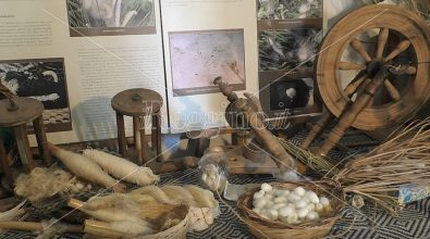Tradizioni a Reggio: alla scoperta dei tesori del museo della seta di Ortì