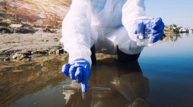 L'Arpacal: «Verifichiamo l'effetto delle acque sul bagnante»