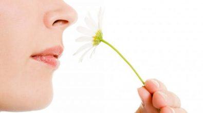 Covid-19, ecco cosa fare per recuperare l'olfatto