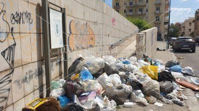 La tomba ellenistica è di nuovo una discarica nonostante la pulizia